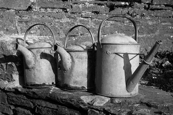 Watering Cans by pledwith