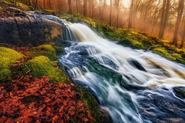 Woodland Falls by douglasR