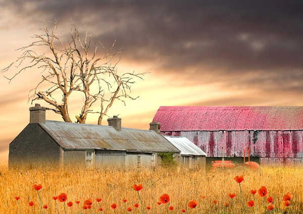 Old Farm by SamCampbell