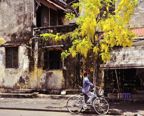 Bike Ride In Vietnam by sweetpea62
