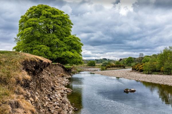 Tyne Walk by mbradley