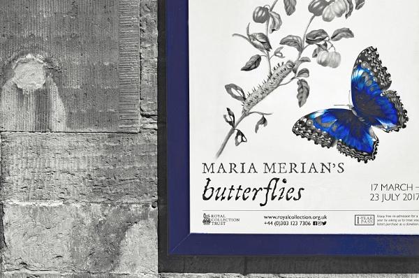 Maria\'s Butterflies by AllistairK
