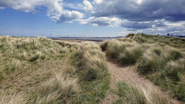 A Well Trodden Path by DaveRyder