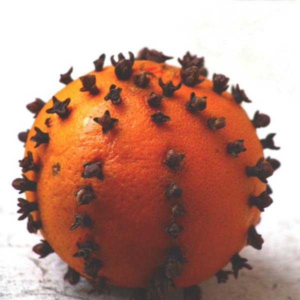 ANT REPELLENT by dimalexa