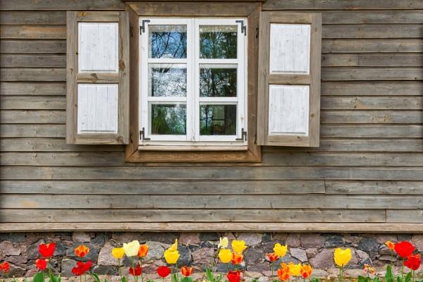 Window 5 by grulis
