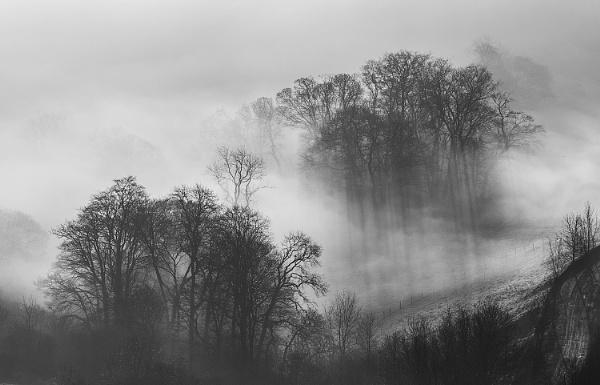 Light Through the Mist by martin.w