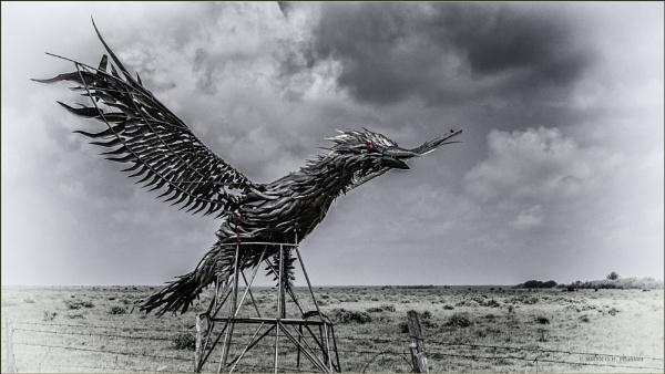 Phoenix rising by GeorgeP