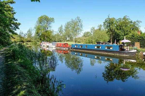 River Chelmer Essex by bluetitblue