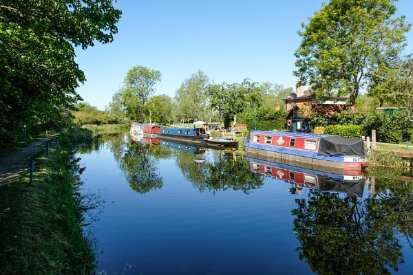 River Chelmer Essex. by bluetitblue