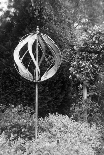 In the garden by dudler