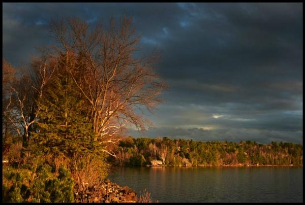 Evening light by djh698