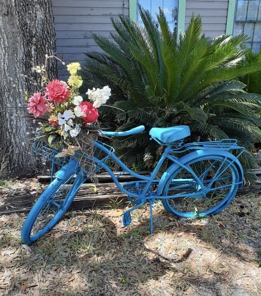 Blue Bike by kl0verleaf