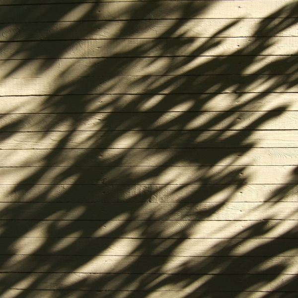 the shadows on your wood-plank wall by leo_nid