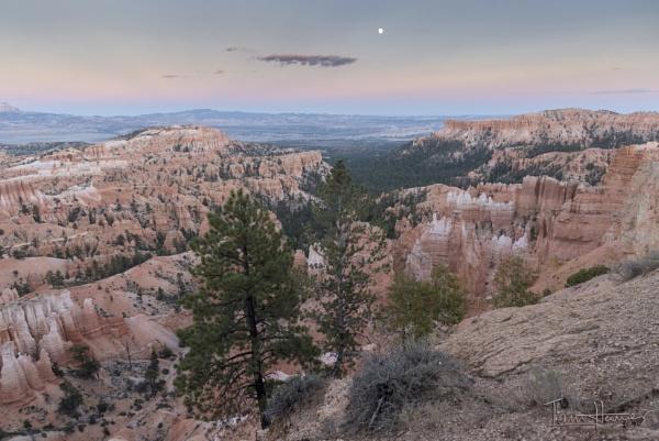 Moonrise Bryce Canyon Utah by IainHamer