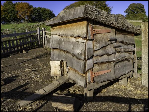 Hen House 1 by woolybill1