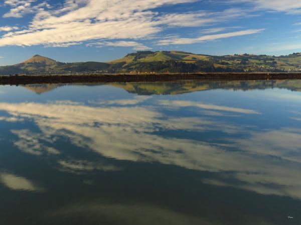 Otago Harbour 21 by DevilsAdvocate