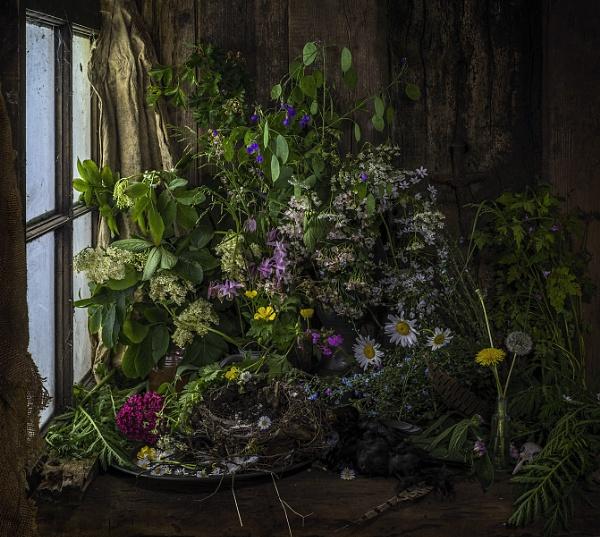 The End of May by GARYHICKIN