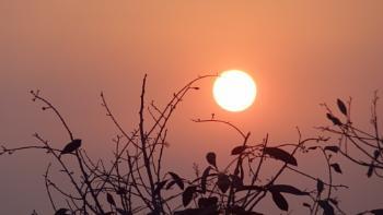 """"""" THE SUN-RISE """""""