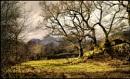 Langdale Sunshine. by Niknut