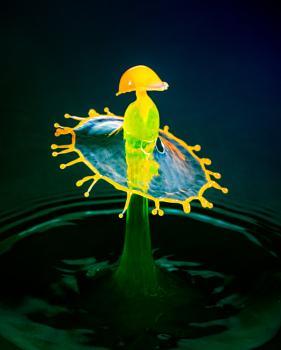 Water Drop PhotoArt 2005301