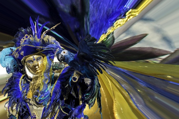 Venice Carnival dream sequence - 2 by nellacphoto
