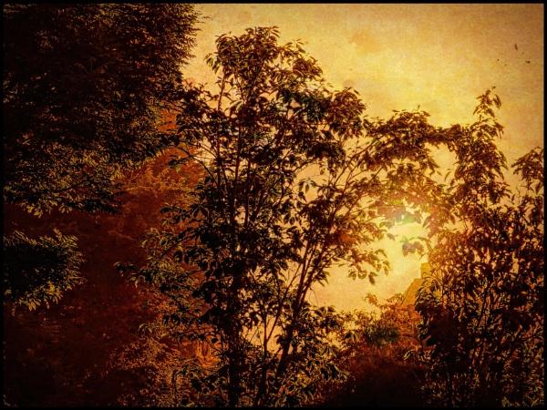 Glorious Sunrise by ThePixelator