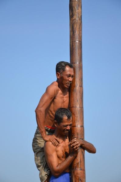 areca tree climbing competition by Nanang