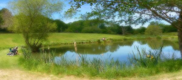 Fishing Pond by Shamley
