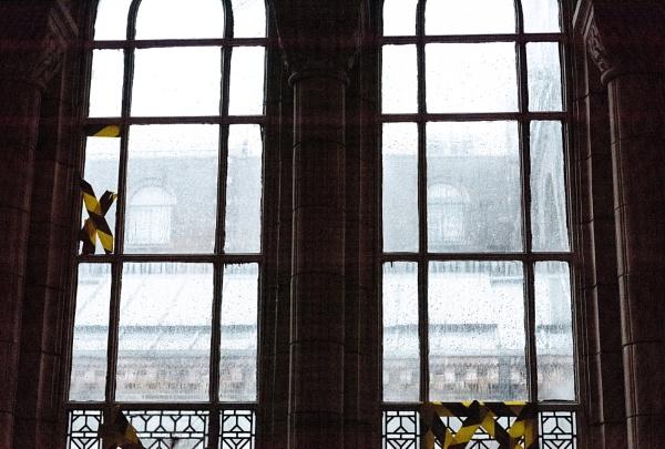 Through Rainy Windows by AJG
