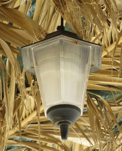 Silly Lamp by ddolfelin