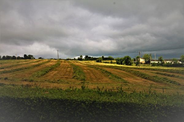 Before the rain by gunner44