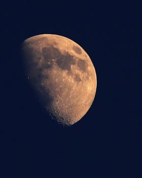 Lockdown moon