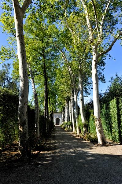 Boboli Gardens by NevJB