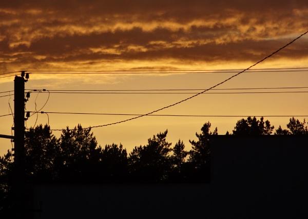 Sunset wires by SauliusR
