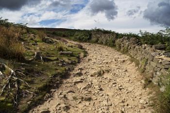 """The Path""  Langsett Moor Near Shefield  West Yorkshire U.K"