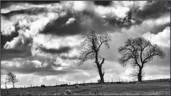 Taken in Isolation 26 by woolybill1