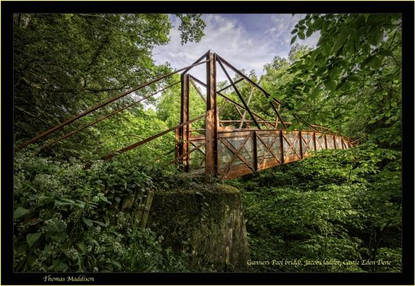 Gunners Pool bridge, Jacobs ladder, Castle Eden Dene by tommyegan