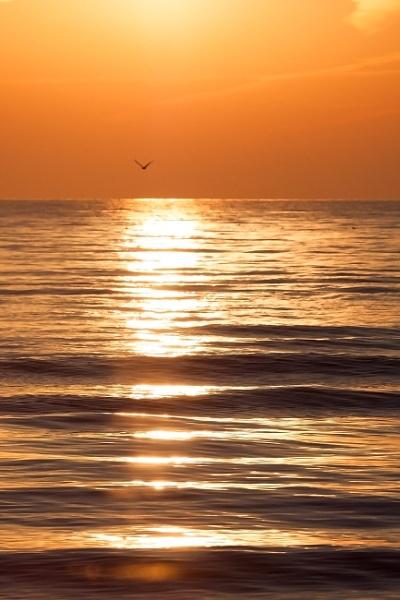 You r my sunshine..... by manicam