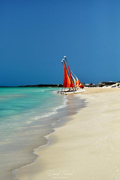 Cayo Santa Maria, Cuba by davten