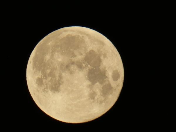 Moon by SUE118