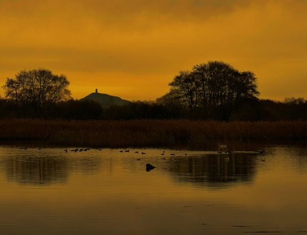 TOR Lake by Shamley