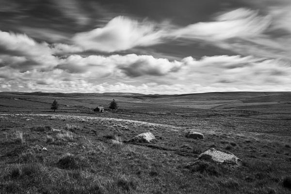 Isolation by Arvorphoto