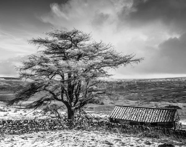 Hartside Winter by mbradley
