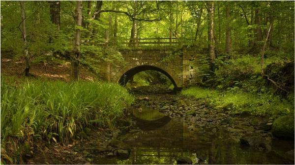The Bridge by wanny