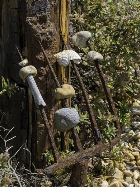 Derek Jarman\'s Pebble Garden by doverpic