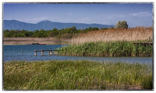 The estuary by nklakor