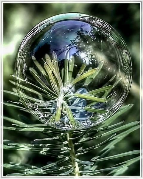 Bubble by dukes_jewel