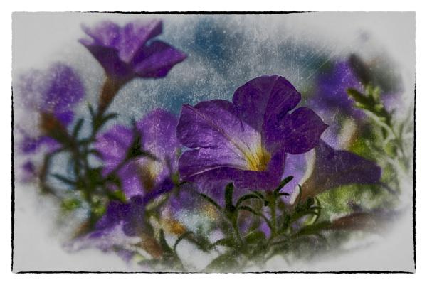 blooming lockdown! by bornstupix2