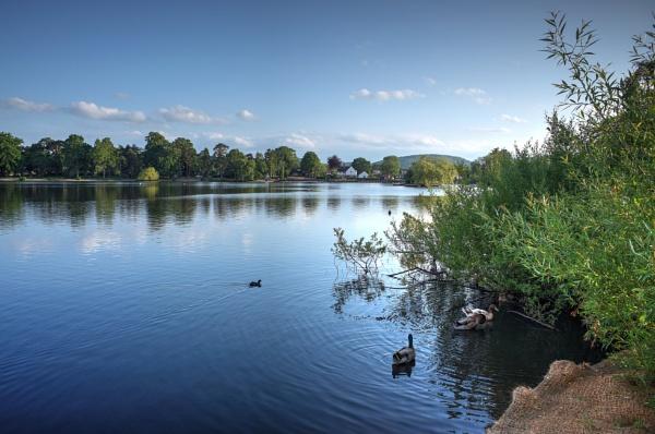 Heath Pond by EeyoresFriends