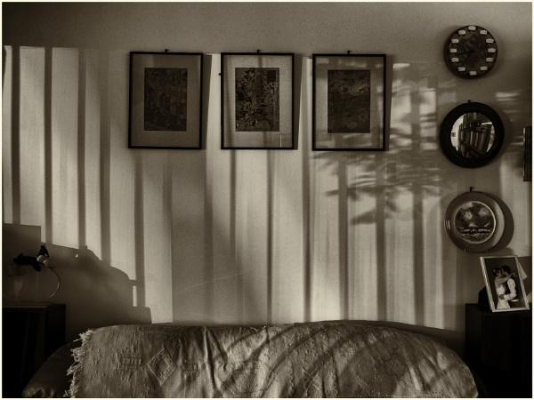 Taken in Isolation 40 by woolybill1
